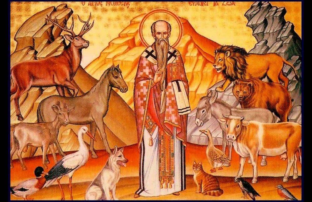 Άγιος Μόδεστος, ο προστάτης των ζώων