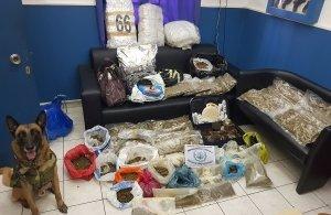 Εξαρθρώθηκε κύκλωμα διακίνησης ναρκωτικών στη Χίο