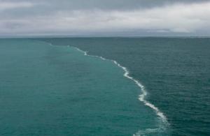 Λιγοστεύει στο οξυγόνο στους ωκεανούς — Τι παρατήρησαν οι επιστήμονες