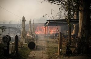 ΕΚΤΑΚΤΟ: Τουλάχιστον 24 άνθρωποι εντοπίσθηκαν νεκροί κοντά σε ταβέρνα στην Αργυρή Ακτή