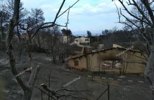 Οι ποντιακοί σύλλογοι στέκονται δίπλα στους πληγέντες των πυρκαγιών της Αττικής