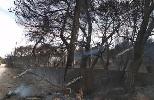 Το προφίλ 65χρονου που φέρεται να προκάλεσε τη φονική πυρκαγιά