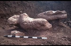 «Κούροι της Αταλάντης»: Αρχαιολόγος εξηγεί πώς ανακαλύφθηκαν τα σπουδαία γλυπτά