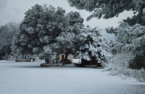 Έκτακτο δελτίο ΕΜΥ: Σε αυτές τις περιοχές θα χιονίσει την Πρωτοχρονιά