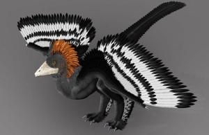 Λύθηκε το μυστήριο! Να γιατί δεν πετούσε ο φτερωτός δεινόσαυρος Αγχιόρνις