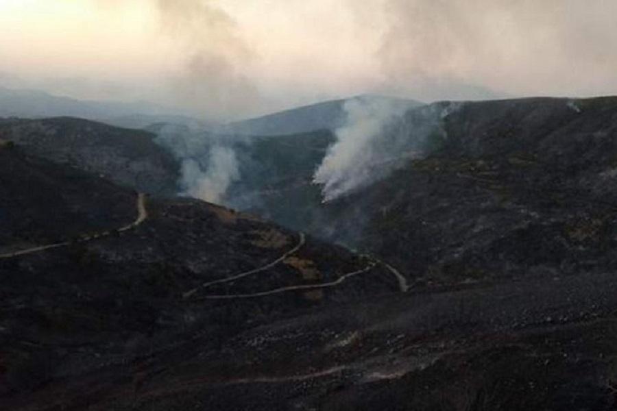 Εύβοια: Εικόνες καταστροφής από την πύρινη λαίλαπα (φωτο, βίντεο)