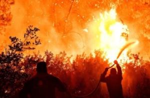Meteo: Τι οδήγησε στην καταστροφική πυρκαγιά στον Σχίνο Κορινθίας